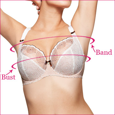 Alternate Bra Measuring Steps