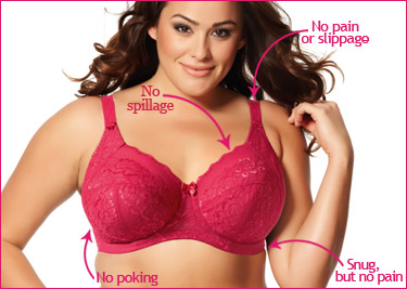 Points of a well fitting bra