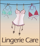 Cleaning Bras and Lingerie Care