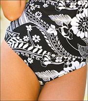 Swim Systems High Waist Swimsuit Brief A228